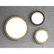 Spot Light--2088016-SPT2088016
